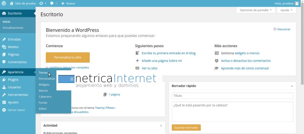 Guías WordPress: cómo cambiar el tema en WordPress - NETRICA®